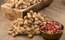 Польза арахиса для организма человека и возможный вред