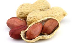 Сколько это 100 грамм арахиса