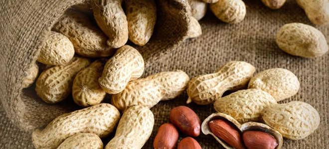 Сколько калорий содержится в 100 граммах арахиса